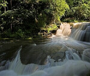 Mountain river and greens 2 v.1.0: Бесплатный хранитель экрана ( Горная река и зелень ) - Free screensaver